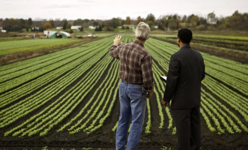 9 Best Marketing Strategies For Agricultural Products